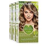 Naturtint | Haarfarbe Ohne Ammoniak | Mit einem hohen Prozentsatz natürlicher Inhaltsstoffe | 170ml (x3)