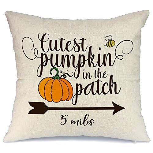 AENEY - Funda de almohada de 18 x 18 cm para decoración de otoño, decoración de otoño, funda de cojín decorativa para sofá, sofá, decoración de otoño 2003bz18