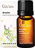 Gya Labs Breathe Essential Oil Blend - Peppermint & Eucalyptus for Sinus Relief & Congestion Relief (10ml) - 100% Pure Therapeutic Grade Aromatherapy Essential Oils Blends for Diffuser & Breathing