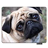 Nicokee Dog Gaming Mousepad Pug Dog Shapi Puppy Mouse Pad Rectangle Mouse Mat for Computer Desk Laptop Office 9.5 X 7.9 Inch Non-Slip Rubber
