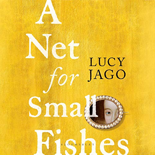 A Net for Small Fishes cover art