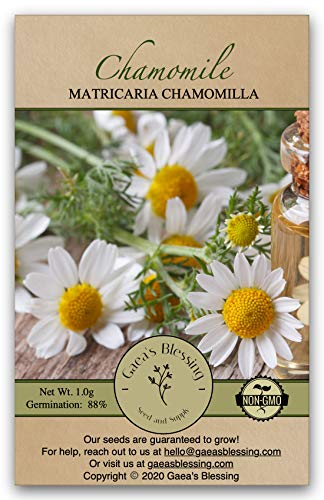 Gaea's Blessing Seeds - Chamomile Seeds (2000 Seeds) Non-GMO Seeds...
