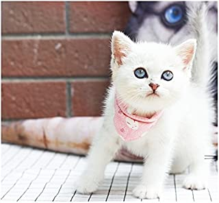 Stock Show Pet Cat Triangle Bibs Scarf with Botton Cute Fashion Neckerchief Collar Necktie for Kitten/Kitty/Puppy