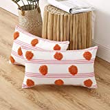 MIULEE 2P 30*50 RQ-Stripe pillow cover_03