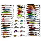 RoseFlower 48 Piezas Kits de señuelos para Pesca Cebos Artificiales de Pesca Cebo Duros/Suaves Incluye Giratorios, Cuchara, Minnow, Popper, VIB - Pesca Accesorios para Pesca de Trucha, Bagre y Lucio