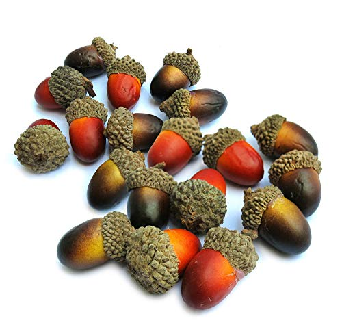 100 Artificial Acorns with Natural Acorn Cap Mixed Color for Home Decoration, Crafts and Party Use