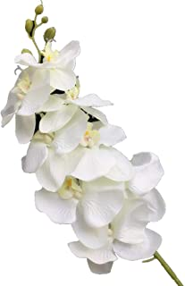 jiumengya 10pcs Artificial Phalaenopsis Butterfly Moth Orchid Fake Orchids Flower for Wedding Centerpieces Decorative Artificial Flowers (Cream)