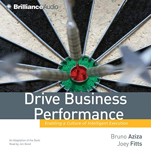 Drive Business Performance audiobook cover art