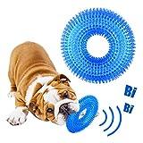 GHEART Hundespielzeug, Wasserspielzeug Hund, Kauspielzeug Hund Zahnpflege Spielzeug, Quietschspielzeug Hund, Pool Spielzeug Hund, Hundespielzeug Quitschend, Kauen Spielzeug Hund, Zahnreinigung, Blau