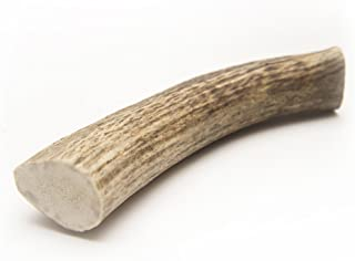 Chipper Critters All Natural Medium Whole Elk Antler Dog Chew - Made in The USA by The Best, Virtually Indestructible Treat for Dogs and Puppies - for Dental and Bone Health
