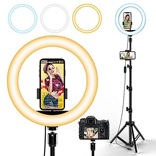 LED Ringlicht mit Stativ,10 Zoll Ringleuchte mit 3 Farbe und 10 Helligkeitsstufen, Fernbedienung USB-betrieben Handyhalterung Kreis Licht Benutzt für Make-up,Live-Streaming, YouTube, Tiktok, Vlog