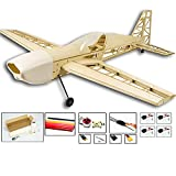 electric airplane motor - Upgrade Extra330 RC Plane Kit to Build for Adults, 39