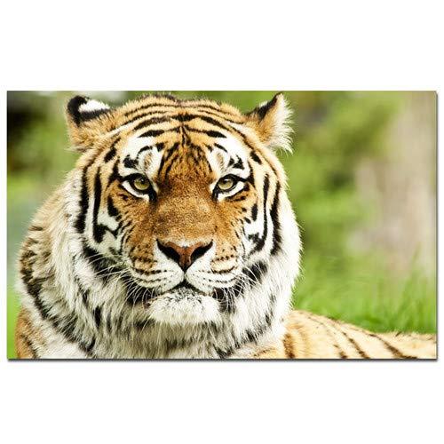 Modernes Dschungel wilder Tiger Landschaft Ölgemälde Leinwanddruck Pop Art Tier Wandbild Wohnzimmer Sofa moderne rahmenlose dekorative Malerei A99 60x80cm