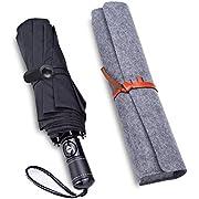 Regenschirm, Windabweisender, Faltbarer Regenschirm mit 10 Stabilen Rippen Fürs Reisen, Automatisch Öffnend und Schließend, Einfach zu Transportieren, Schwarz von Lapfome