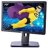 """Schermo Piatto PC 19"""" DELL P1913B 0GSDXH 02W2Y8 LCD TFT TN VGA DVI - D Display 16:10"""