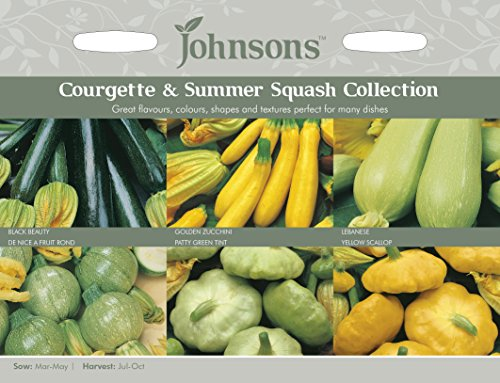 Johnsons 15228 Vegetable Seeds, COURGETTE & Summer Squash Collection