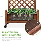 Best Choice Products 48in Wood Planter Box & Diamond Lattice Trellis, Mobile Outdoor Raised Garden Bed for Climbing… 11 DIAMOND LATTICE: A 48-inch trellis is woven in a tight, diamond pattern to provide structural support and plenty of space for climbing plants PLANTER BOX: Fill the 10-inch deep box with your favorite potted plants and a water-resistant liner (not included) or a fresh soil bed thanks to built-in drainage holes OPTIONAL WHEELS: A set of 4 included wheels can easily attach for added mobility and come with two locks for stability