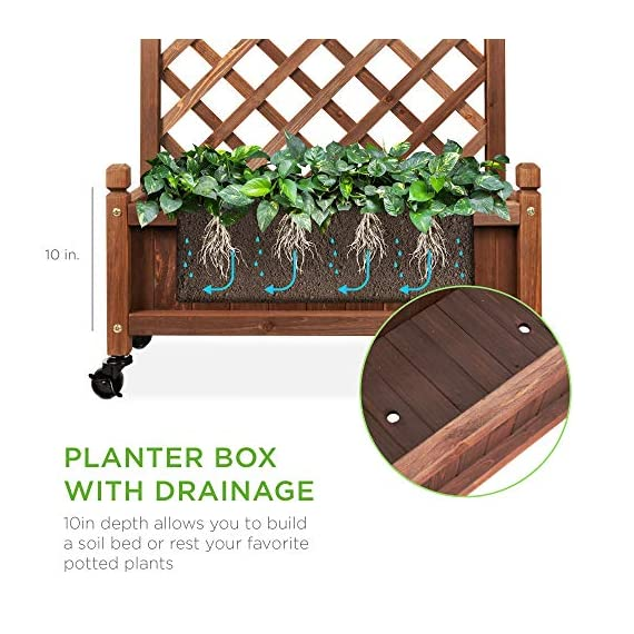 Best Choice Products 48in Wood Planter Box & Diamond Lattice Trellis, Mobile Outdoor Raised Garden Bed for Climbing… 4 DIAMOND LATTICE: A 48-inch trellis is woven in a tight, diamond pattern to provide structural support and plenty of space for climbing plants PLANTER BOX: Fill the 10-inch deep box with your favorite potted plants and a water-resistant liner (not included) or a fresh soil bed thanks to built-in drainage holes OPTIONAL WHEELS: A set of 4 included wheels can easily attach for added mobility and come with two locks for stability