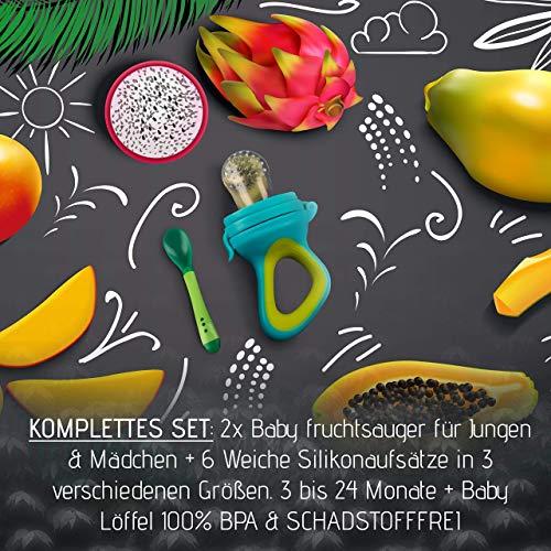 2 Fruchtsauger Baby + 1 Baybylöffel für Baby ab 3 Monate & Kleinkind + Zertifikat + 6 Silikon-Sauger in 3 Größen – BPA-frei – Schnuller Beißring für Obst Gemüse Brei Beikost + Gratis Ebook - 3