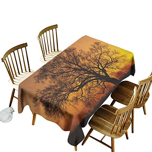 Tree Waterproof Polyester Table Cover Old Oak in The Sunset Horizon Golden Sun Rays Countryside Rural Nature Picture Print Indoor Outdoor Spring Summer Party Picnic Camping 55x120