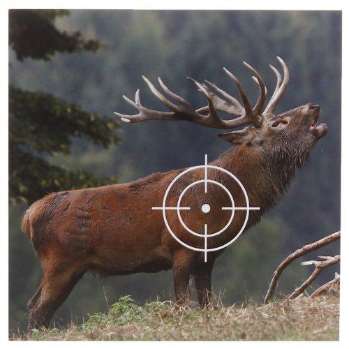 50 Tiermotiv Zielscheiben Hirsch Format 14x14 cm
