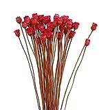 lujiaoshout Fleurs séchées artificielles décoratives Fleurs Immortelles Bouquet Simulation Branches séchées pour la décoration 1 Bouquet (Rouge)