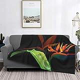 Manta de microfibra ultrasuave para decoración del hogar, manta de franela cálida antipilling para sofá, cama, campamento de 60 x 50 pulgadas, flor de pájaro del paraíso sobre fondo negro