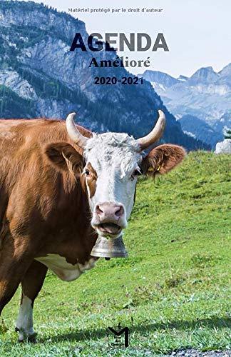 Agenda Amélioré 2020 2021: Mi agenda mi bullet journal