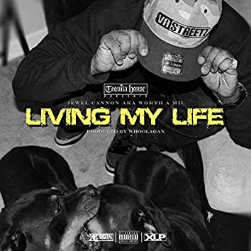 Living My Life - Single