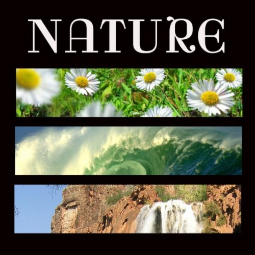 Relaxing Free Birds Singing Relaxing Spa Music Mp3 Track Nature Sounds For Spa And Yoga And Soothing Music By Soundscapes Relaxation Music On Amazon Music Amazon Com