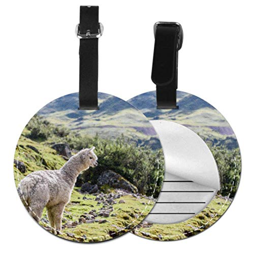 Funny Luggage Tags for Suitcases A Cute Smart Pretty Alpaca Name Tag for Luggage Travelling Bag Luggage Accessories for Travel Tags with Adjustable Black Strap for Bags & Baggage with Privacy Protect