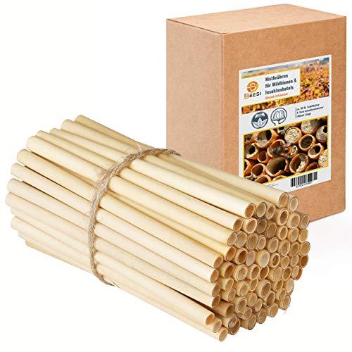 BEESI 95 Schilfröhrchen 14 cm lang für Insektenhotel Durchmesser 4-7 mm inkl gratis E-Book I Schilf für Bienenhotel Nisthilfe I Niströhren für Wildbienen