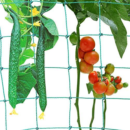 Souarts Garten Ranknetz Rankhilfe Netz mit Großer Maschenweite Gitter Netz Kletterpflanzen Rankgitter für Garten Rankhilfen Gemüsepflanzen Rosen