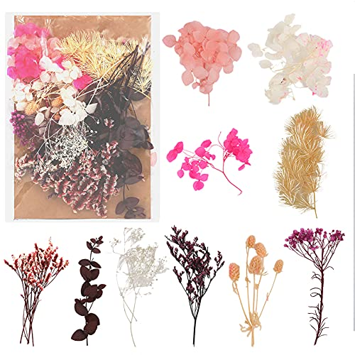 Floepx Natürliche Getrocknete Blumen,Trockenblumen Set,DIY Gepresste Blumen,Trockenblumen Resin,Blumen Natürliche Gemischte,Blüten Getrocknet für Scrapbooking, DIY-Kerze, Schmuckanhänger Basteln