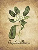 Glossy Leaved Pittosporum: Vintage Floral Notebook With College Ruled Lined Pages for Writing and Journaling (Beautiful Flowers & Fruits Note Books)