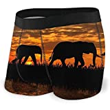 Web--ster Calzoncillos Boxer de Hombre Siluetas de Elefantes sobre un Fondo Puesta de Sol Elefantes contra el telón de Fondo Calzoncillos Bragas