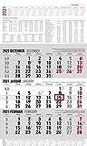 3-Monatskalender groß 2021 - Büro-Kalender 30x49 cm (geöffnet) - mit Datumsschieber - inkl. Jahresübersicht - Alpha Edition