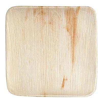 "Eco-Gecko 10"" SQUARE Palm Leaf plate / 100-ct case"