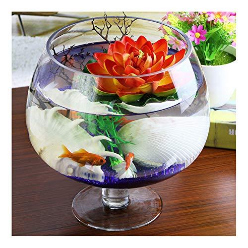 NOY Weinglas Fish Bowl, kleines Aquarium Aquarium Home Becher transparentes Aquarium Glas Weinglas Vase Kultur Aquarium-Diameter 17cm
