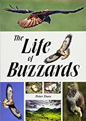 Image: The Life of Buzzards | Paperback: 224 pages | by Dr. Peter Dare (Author). Publisher: Whittles Publishing (October 7, 2015)