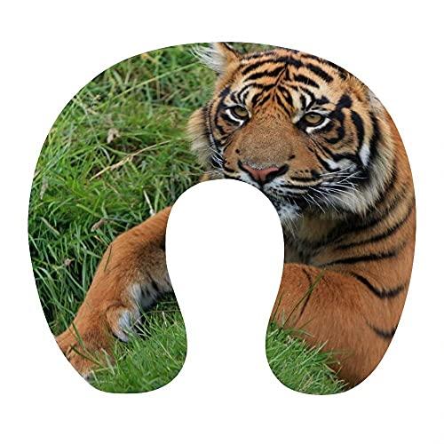 Almohada Viaje Cuello 30*29*10 cm 100% Fibra de Poliéster Ultrafina Almohada Viaje Cervical Transpirable con Funda con Cremallera Cojin Cervical Viscoelástica de Espuma,Tigre Animal