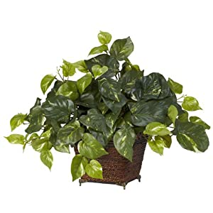 Nearly Natural Nearly Natural Pothos Decorative Silk Plant Green 1