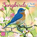 2021 Songbirds of North America 16-Month Wall Calendar