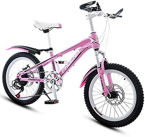 Kinderfürr r fürrad Prinzessin Speed Bike Kinder fürrad mädchen Sport Bike Camping Bike, Kohlenstoffstahl Rahmen (Farbe   Rosa, Größe   18inches)