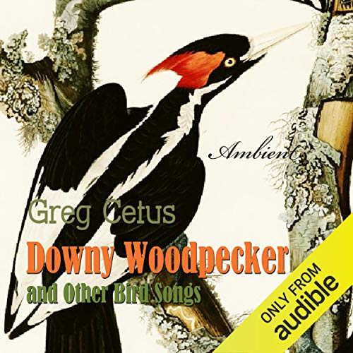 Downy Woodpecker and Other Bird Songs  By  cover art