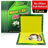 Mouse Glue Traps, Rat Glue Board, 5 Pack Extra Large Sticky Rat Glue Traps, Peanut Butter Scented Glue Traps for Mice,...