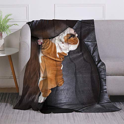 Miblor Cute Bulldog Flannel Throw Blanket for Bed Couch Sofa Super Soft Warm Plush Blanket English Bulldog Puppy Relaxing on Black Leather Sofa Bedspread Gift Idea 60x80 Inch