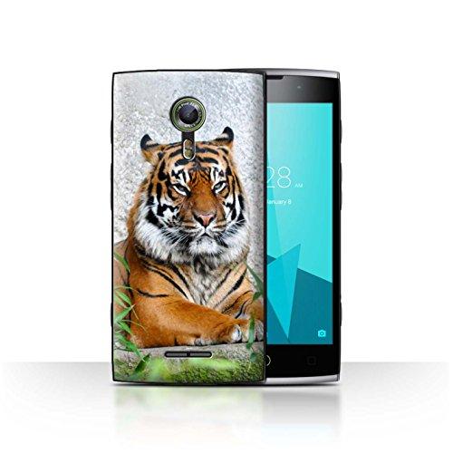 Hülle Für Alcatel Flash 2 Wilde Tiere Tiger Design Transparent Ultra Dünn Klar Hart Schutz Handyhülle Case