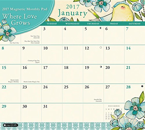 Orange Circle Studio 2017 Magnetic Monthly Calendar Pad, Where Love Grows (Magnetic Monthly Pad)