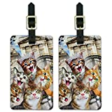 Cats Selfie at London Palace England Luggage ID Tags Cards Set of 2
